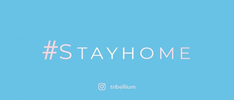 https://www.instagram.com/tribellium/
