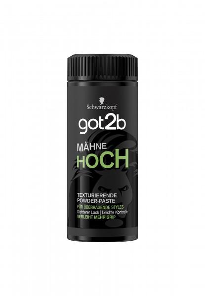 gor2b Powder Mähne Hoch Texturierende Powder-Paste 15g